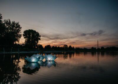wedding lake 73